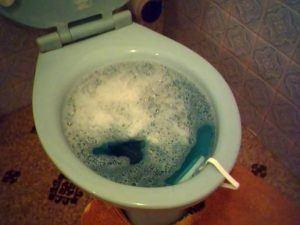 Απόφραξη τουαλέτας